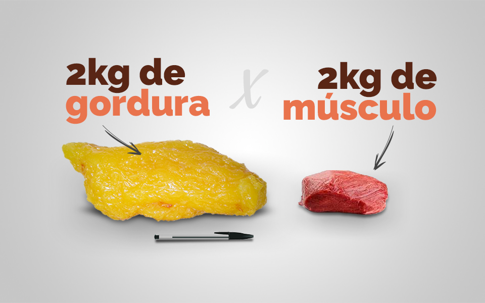 Diferença de tamanho entre 2kg de gordura e 2kg de músculo